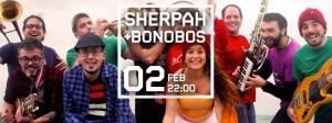 sherpah stroika 2 febrer