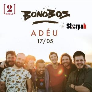 bonobos adeu